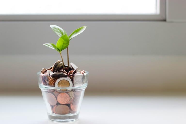 18 best frugal living tips of moms in 2020- allmomsblog
